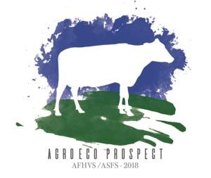 afhvs asfs 2018 logo